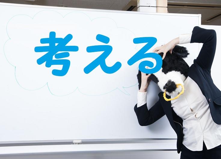 オッズ 函館 記念